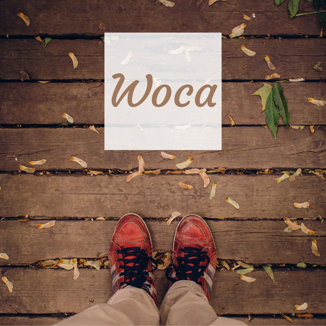 Woca legno